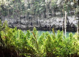 Höhle im Parque de los Tres Ojos Santo Domingo
